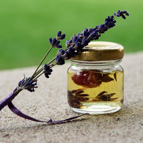 Lovable Lavender